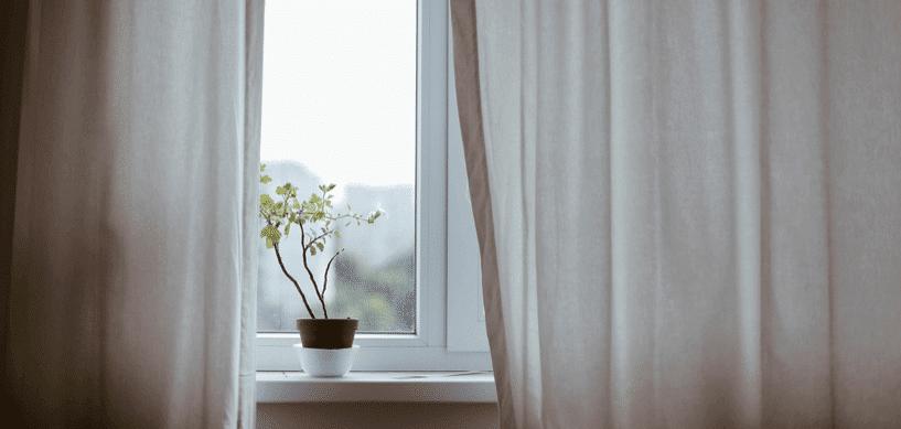 wehender-vorhang-und-pflanze-auf-der-fensterbank