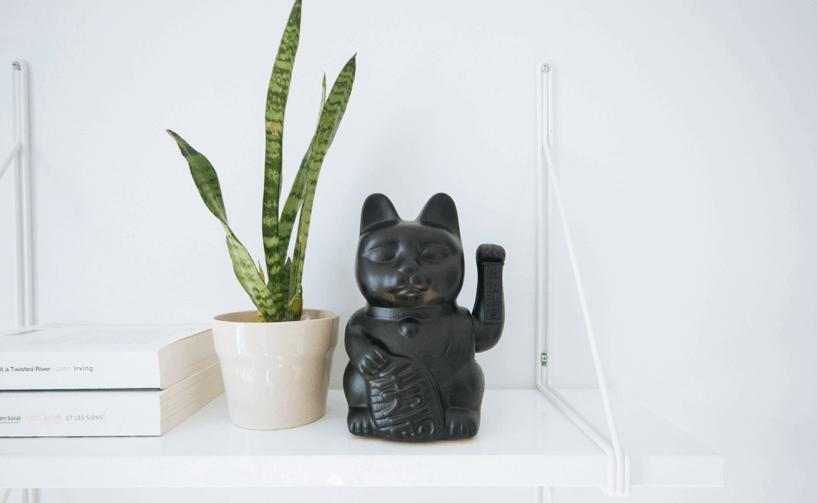 feng-shui-winkekatze-auf-regal-mitpflanze