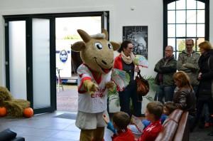 FC Köln Kiddy Hennes