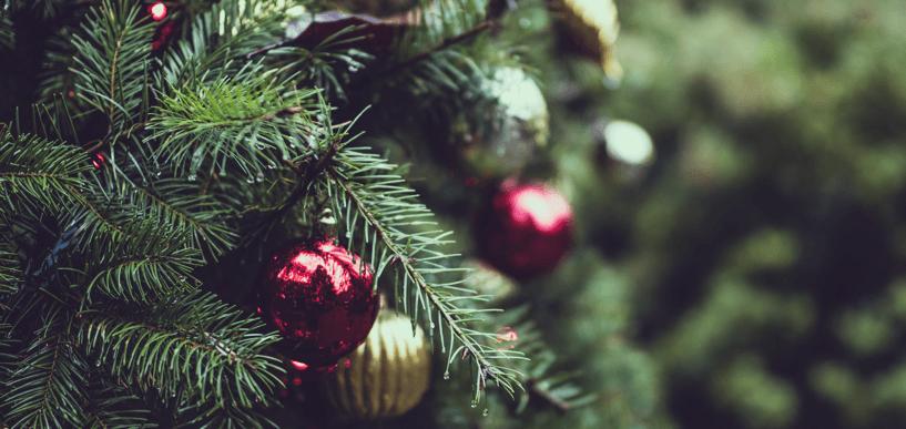 Weihnachtsbaum in Deutschland