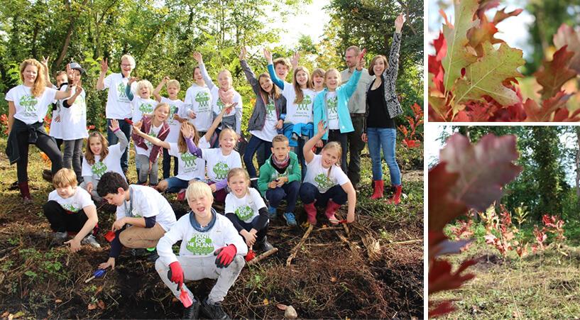 Gruppe von Kindern, die Bäume gepflanzt hat